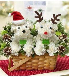 Santa Paws and His Best Reindeer™