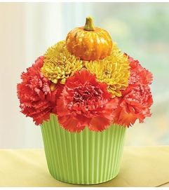 Cupcake in Bloom® - Fall