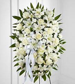 elegant white blooms