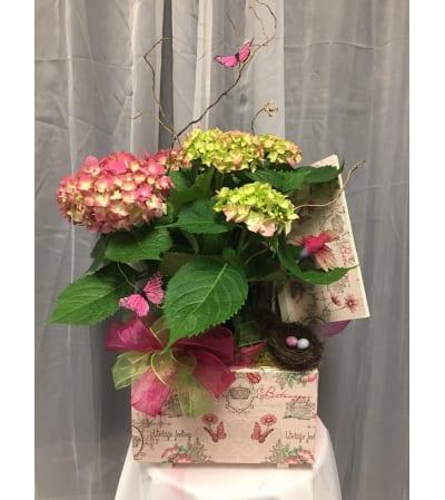Ellington's Blooming Memory Box