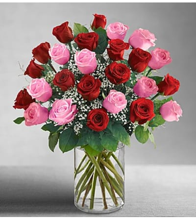 Two Dozen Red & Pink Roses