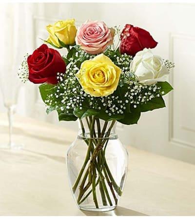 Six Assorted Roses