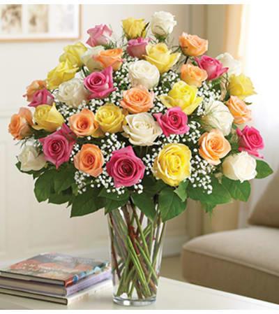 Three Dozen Assorted Roses