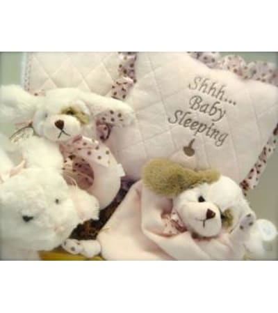 New Baby Gift Basket for a Girl