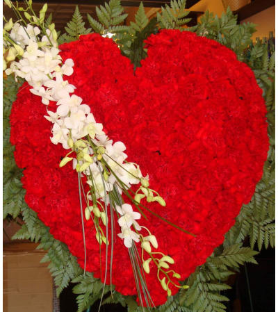 Solid Red Carnation Heart