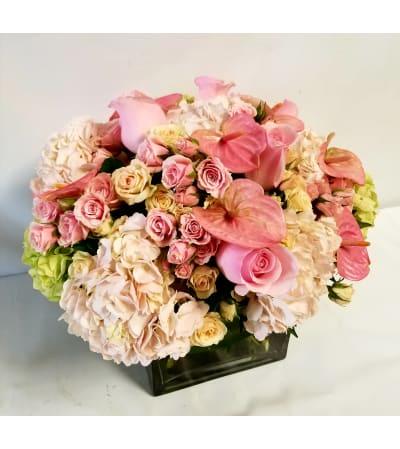 Precious Pink Blossoms