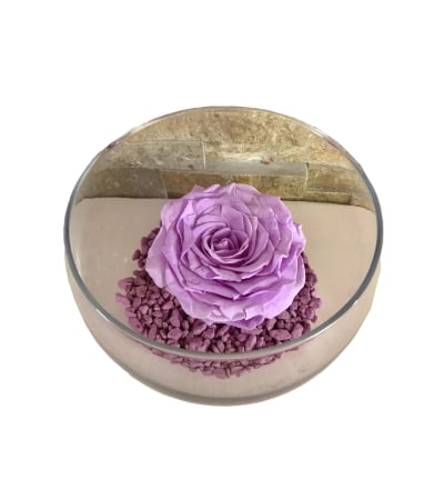 Forever Rose - Purple in bowl
