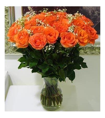 Orange Dozen
