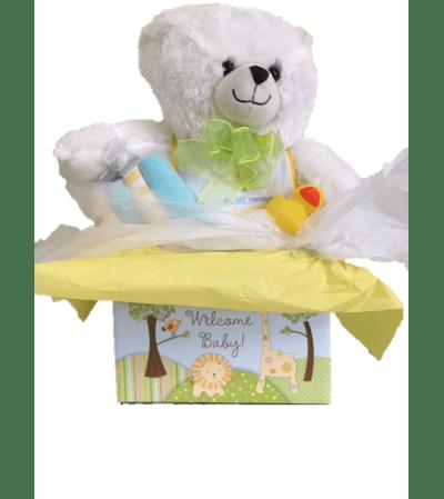 New Baby Bear - Gift Set