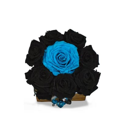 Panthers Forever Roses