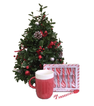 Celebration Flower Tree Gift Set