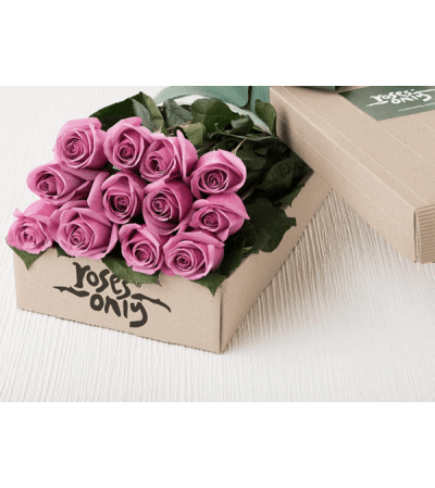 One Dozen Purple Roses