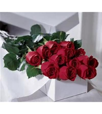 A DOZEN OF ROSES IN A GIFT BOX