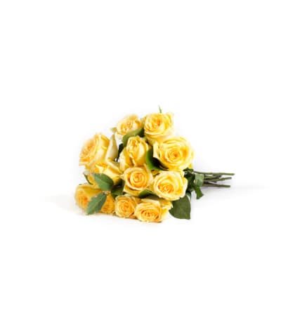 12 Wrapped Classic Yellow Roses