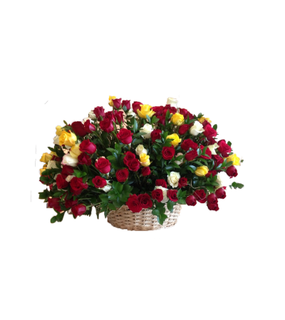 Ultimate Roses Basket