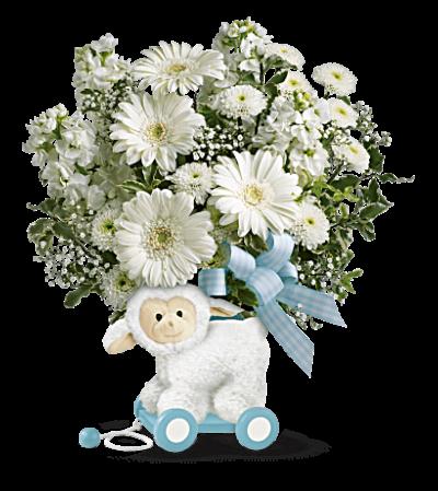 Sweet Little Lamb - Baby Blue