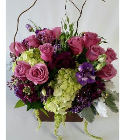 Beautiful Purple Blossoms