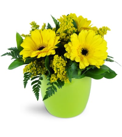 Morning Sunbeam Daisy Vase™