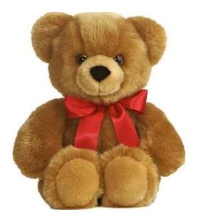 Hugs and Kisses Bear