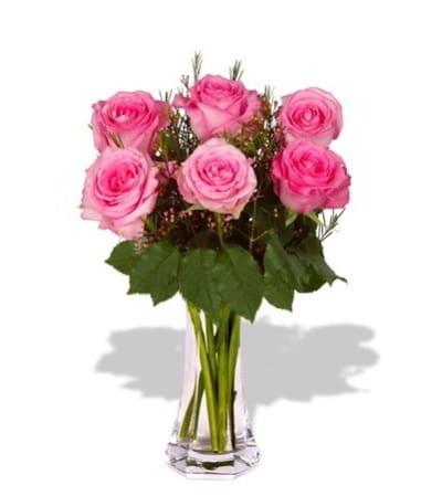 Exquisite Roses in PInk