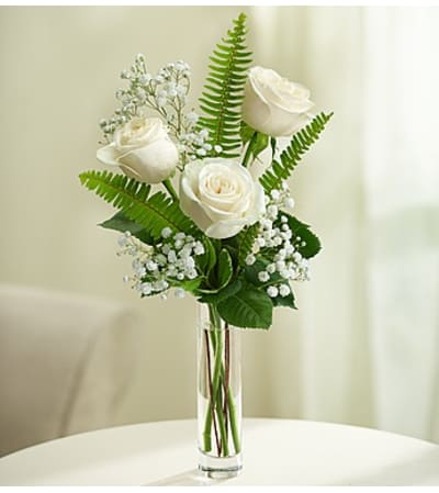 Love's Embrace™ Roses – White