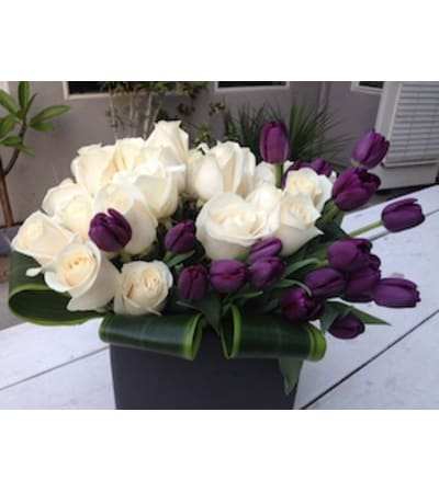 purple tulips and white roses