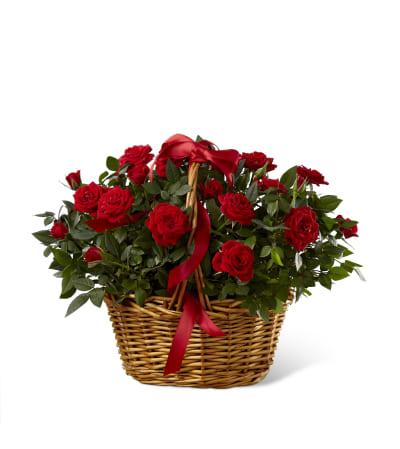 The FTD® Mini Rose