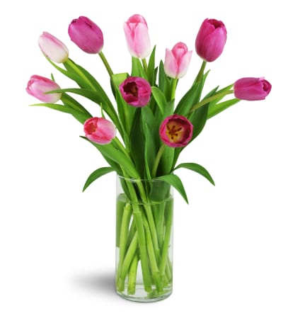 Perfect Pink Tulips™
