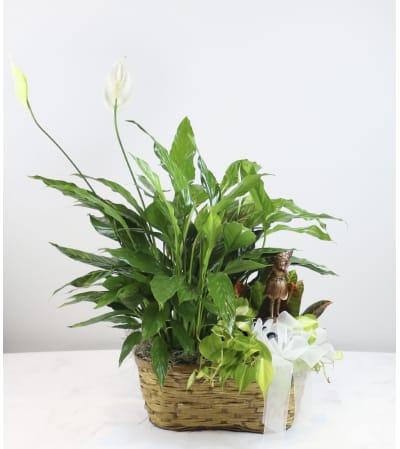 Fairy Garden Basket