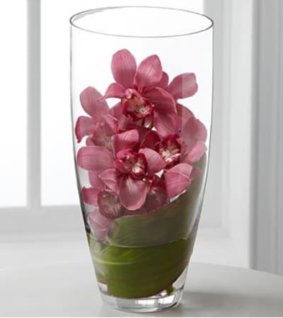 Spirited Luxury Orchid Bouquet
