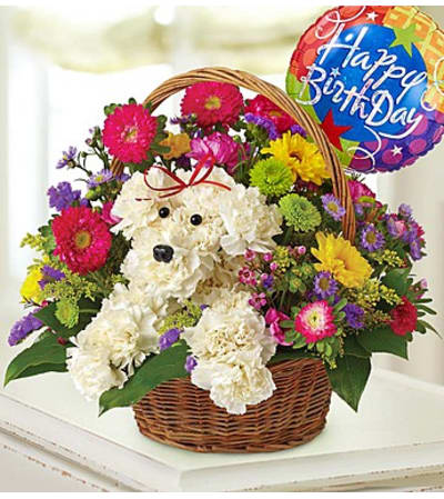 a-DOG-able® in a Basket - Birthday
