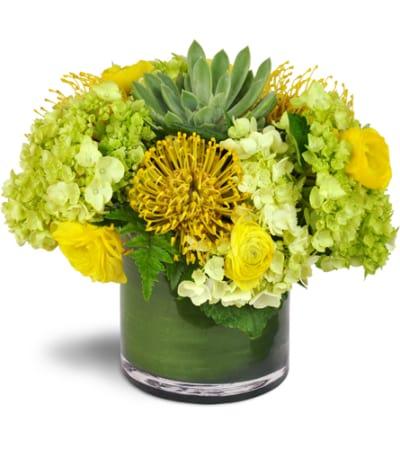 Succulent Sunray Bouquet™