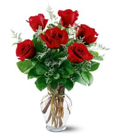 6 red roses for someone special