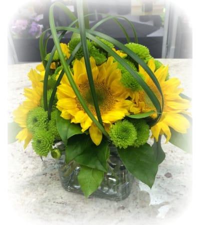 Brilliant Sunflower Surprise