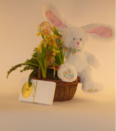 Small Easter Bunny Basket