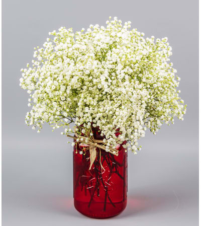 Simply Baby's Breath