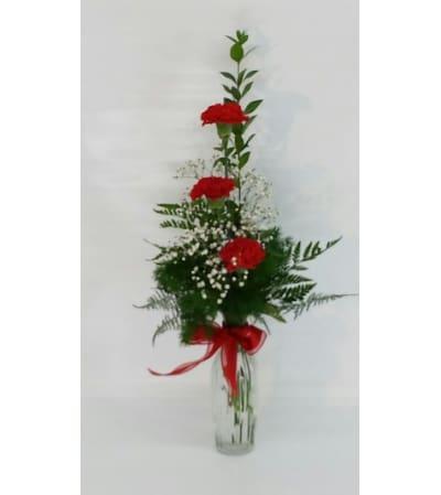 Red Carnation Vase