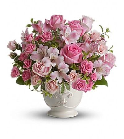 pink popouris bqt
