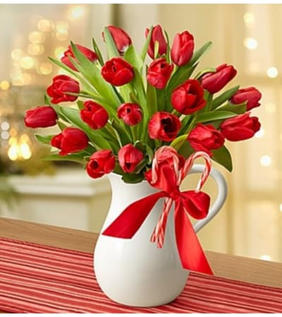Peppermint Pitcher of Tulips™ - Red