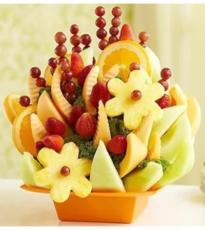 Fruit Splendor