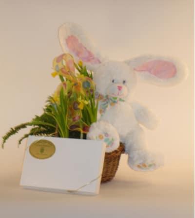 Large Easter Bunny Basket