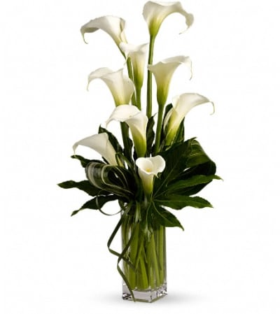 My Fair Lady by Teleflora