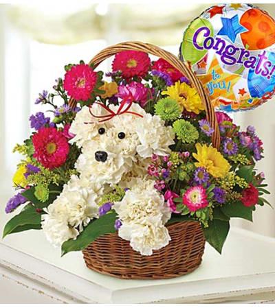 a-DOG-able® in a Basket - Congrats