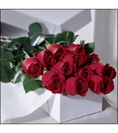 One Dozen  Roses Boxed
