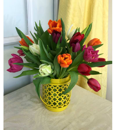 Assorted Tulips in Yellow Lantern