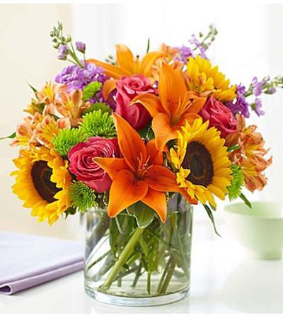 Embrace Floral