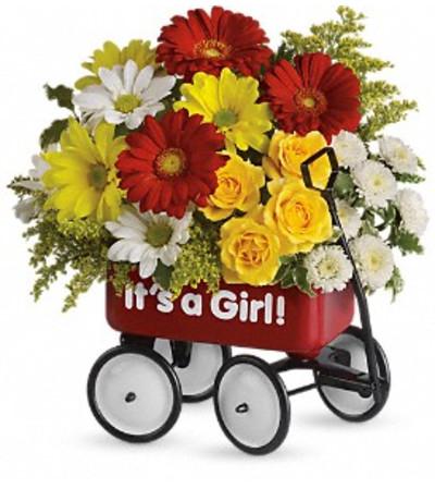 Teleflora's Baby's Wow Wagon - Girl