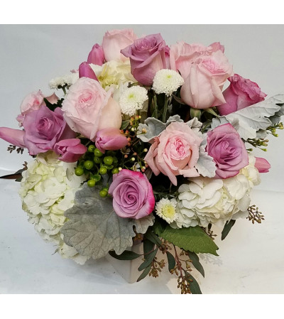 Lovely Pink Roses