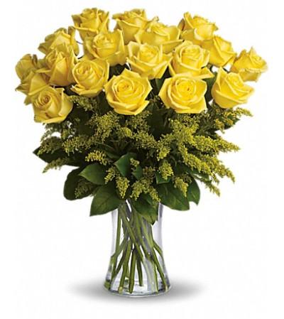Burst of yellow roses