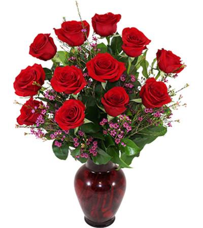 One Dozen Deluxe Roses